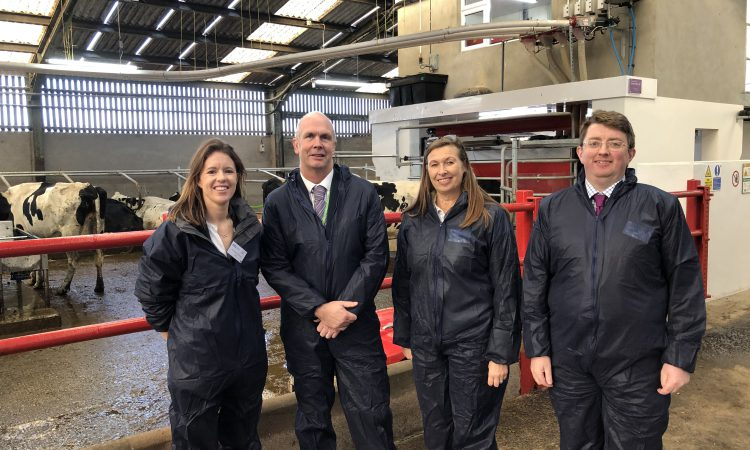 AgriSearch to launch robotic milking system research project