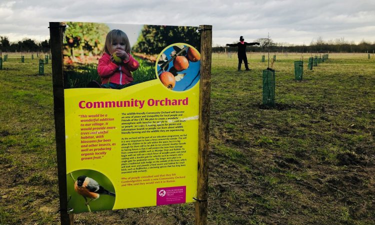 Community orchard awarded £15,000 grant from Postcode Community Trust