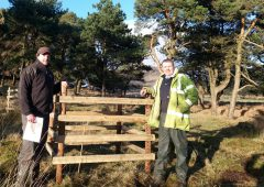 Woodland Trust helps tree restoration on farmland near Kilkeel