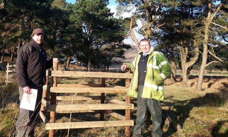 Woodland Trust helps tree restoration on farmland near Kilkeel