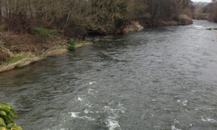 Fivemiletown business fined for water pollution offence