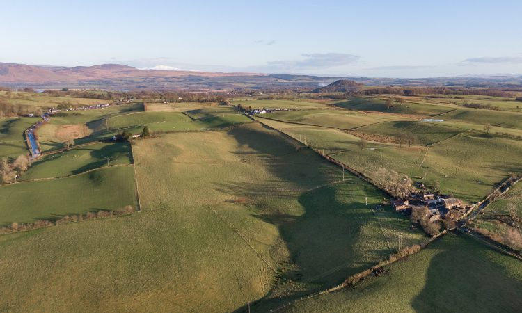 For sale: Small farm with potential, within Loch Lomond National Park