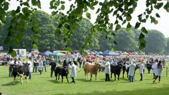 Full steam ahead for summer 2020's only agricultural show
