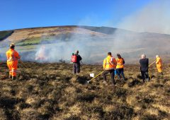 DAERA minister calls for halt to prescribed burning