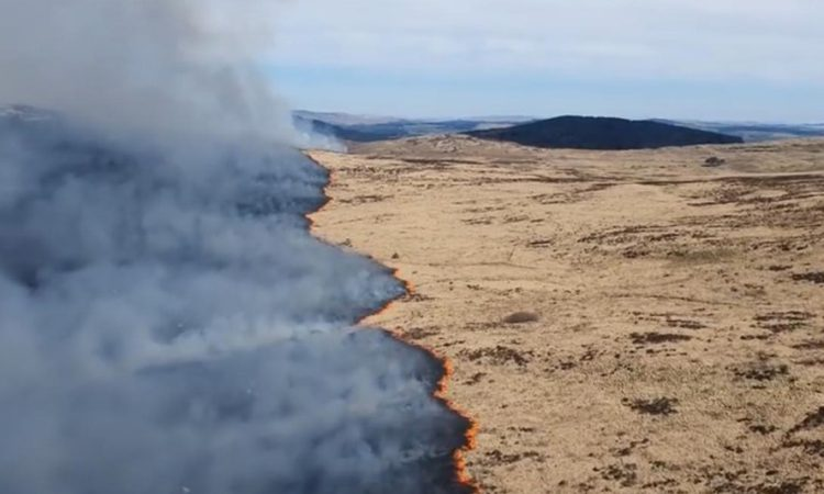 Galloway wildfire spans 15km² of gorse, grassland and forest