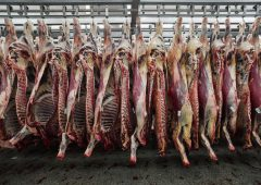Retailers slammed for importing 400t of Polish meat during Covid-19 boom