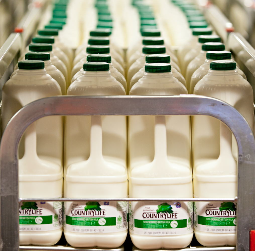 Dairy industry launches £1m support campaign