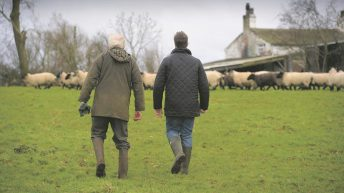 'We cannot afford to get this wrong' – NFU Cymru on proposed Agriculture Bill