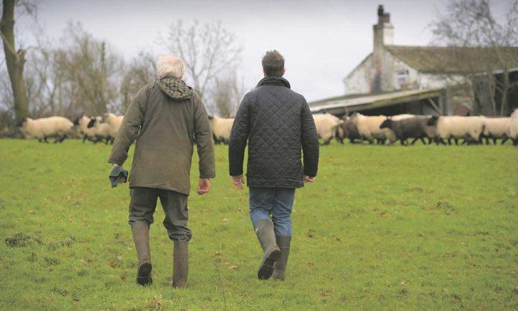 NI farm lobby body warns against June start date for farm inspections