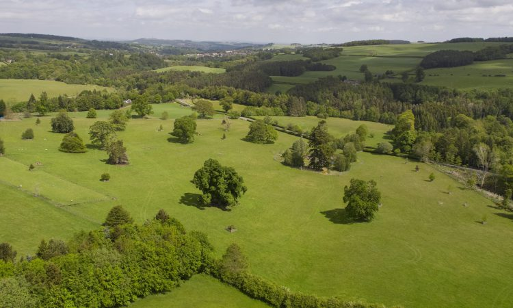 Private sales on the rise in variable farmland market