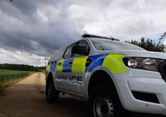 50 Texel Cross sheep stolen in North Yorkshire