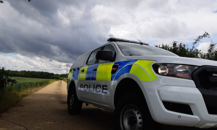 Over 100 lambs stolen from a farm in Cumbria