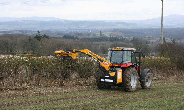 'Clear evidence' required for cutting hedges during closed period