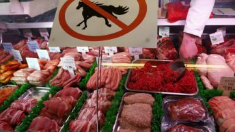 Illegal horsemeat in Irish slaughterhouses seized by Europol