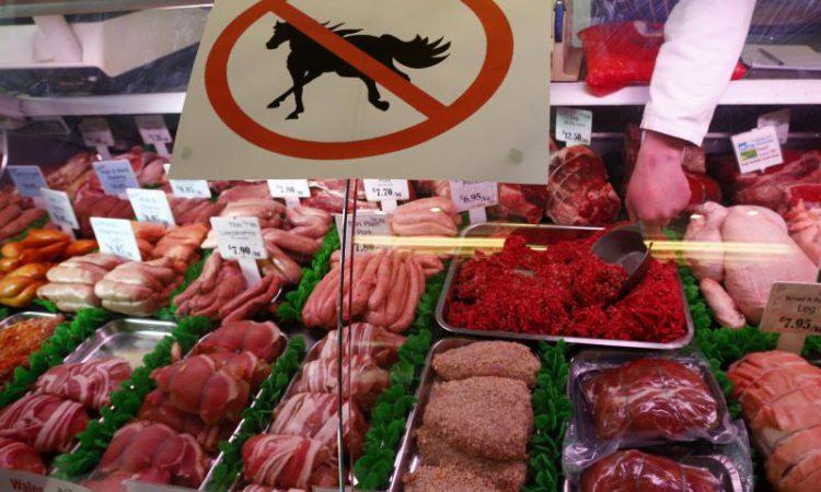 Illegal horsemeat in Irish slaughterhouses seized by Europol