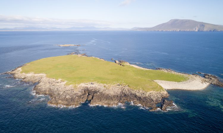 Social distancing the wild way: Private 55ac island guiding at €3,500/ac to go for auction