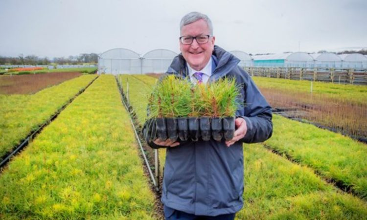 £2 million fund to grow Scottish forestry and farm businesses