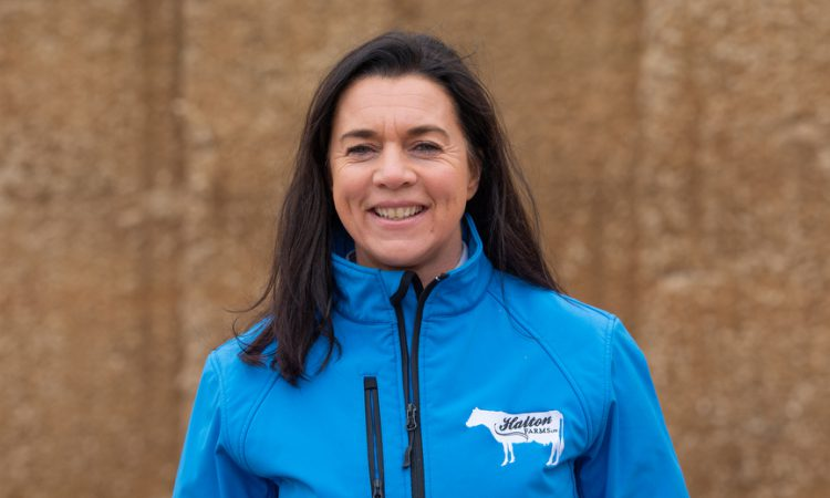 3 outstanding finalists selected for Dairy Industry Woman of the Year Award