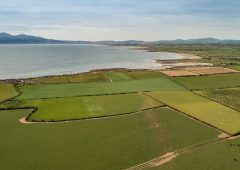 Opportunity to purchase arable and livestock farm with coastal location in Co. Down