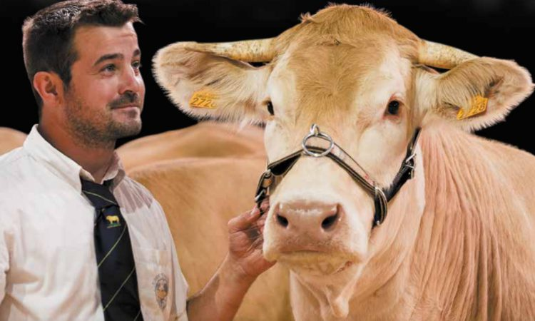 Sommet de l'Elevage livestock show will 'go ahead as planned' in October