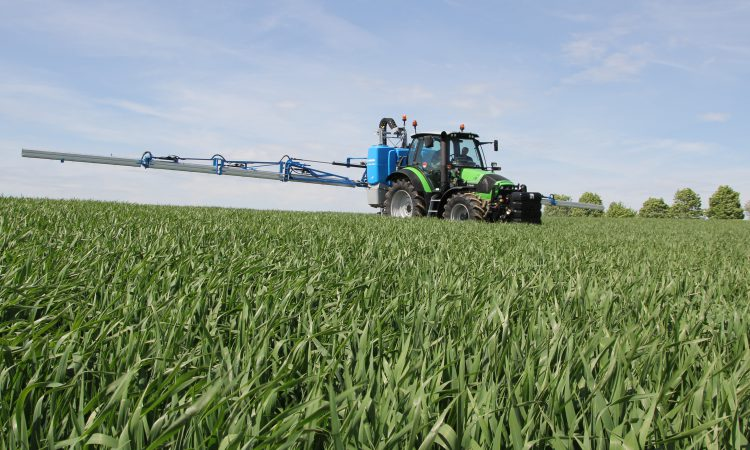 Wheat DNA shows visually clean crops had high levels of Septoria