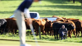 Antrim farmer goes viral with agri-spec gallery during Irish Open