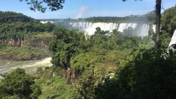 Mercosur trade deal 'fails sustainability criteria' – Oxford University