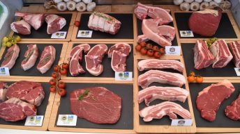 'Agriculture Bill secures fairer share of red meat levy for each nation'