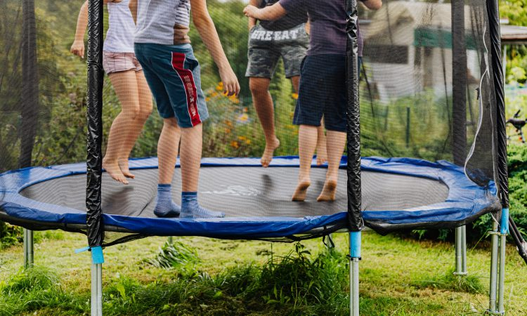 Missing cow discovered…stuck on trampoline