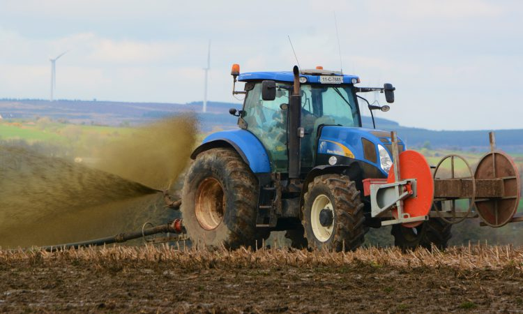 New report lays bare extent of NI agriculture's phosphorus excess
