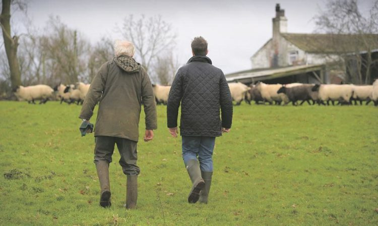 NI farmers least likely in UK to want to retire