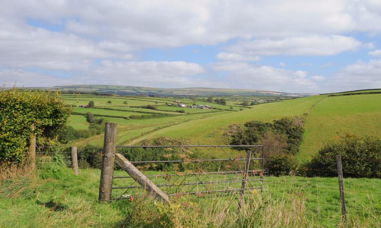 Poots launches £300,000 Rural Social Economy Investment Scheme for NI