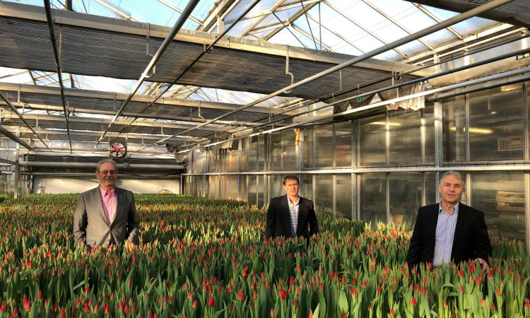 'Time to decide future of AHDB horticulture' – opposition to horticulture levy