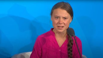 Thunberg criticises UK government for allowing farmers to use pesticides banned by the EU