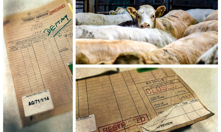 Declassified files: 'Fish was on the plate, but beef (and BSE) were on the menu'