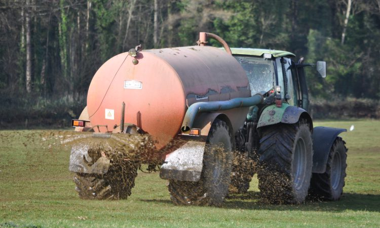 NAP derogation applications and fertilisation account deadline extended in NI