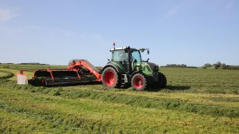 Multi-cut silage could help dairy farms weather the effects of drought