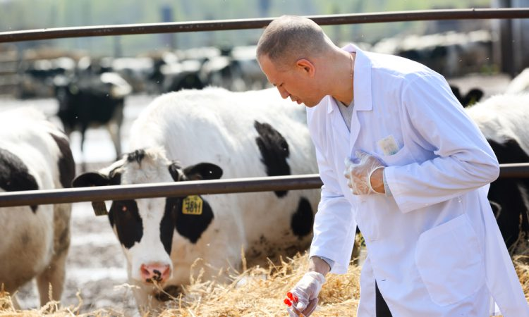 UFU backs calls for UK and EU agri-food standards to be aligned