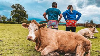 Better breeding with Bulls Out for Cancer campaign