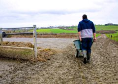 Urgent call for farmers to sign up for Farmer Time due to unprecedented teacher demand