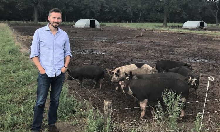 Yorkshire Nuffield Scholar explores impact of livestock building design on both humans and animals