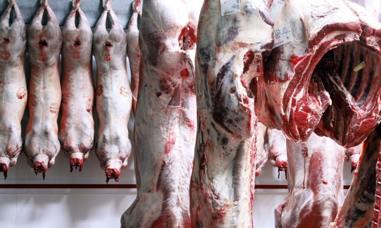 NSA raises concerns over availability and capacity of UK abattoirs