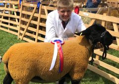 Next Generation Shepherds rise to Covid-adapted skills competition