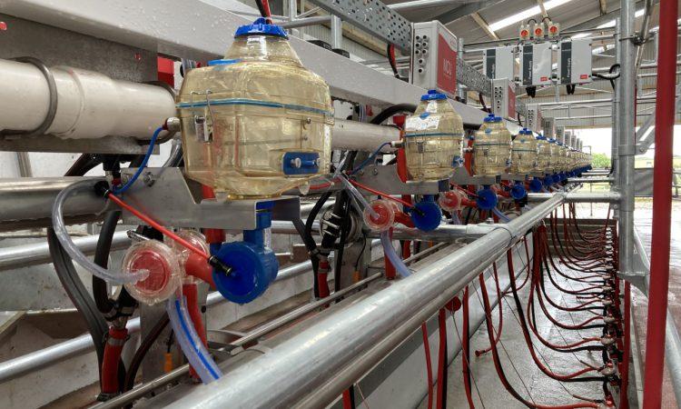 NI milk price round-up: Lakeland swaps unconditional bonus for base price rise