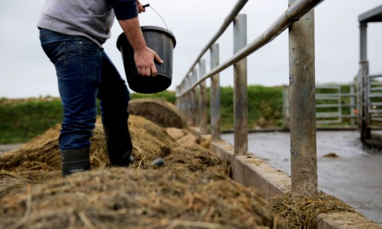 No 'special arrangements' for agriculture in either of NI's Climate Change Bills