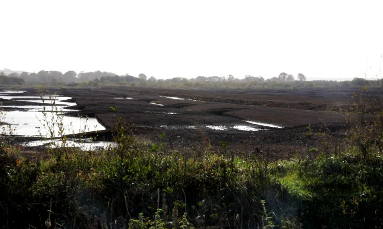 NI peatland strategy proposes payments for bog restoration