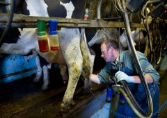 New collaboration to establish low carbon milk