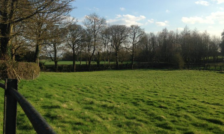 Multi-million pound boost for green jobs and nature recovery
