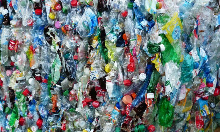 DAERA seeks ideas on how to eliminate plastic litter in NI
