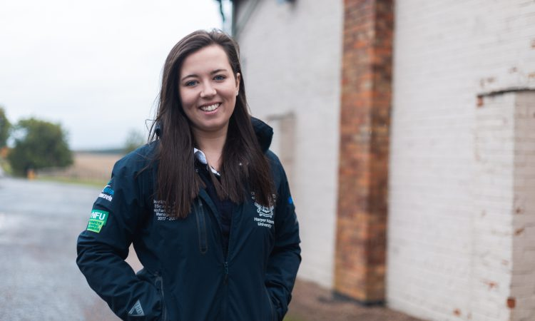 Applications open for AHDB's Pig Industry Scholarship programme